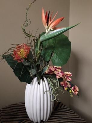 IMG_6996 tropical